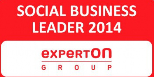 Social Business Leader 2014 Experton Group